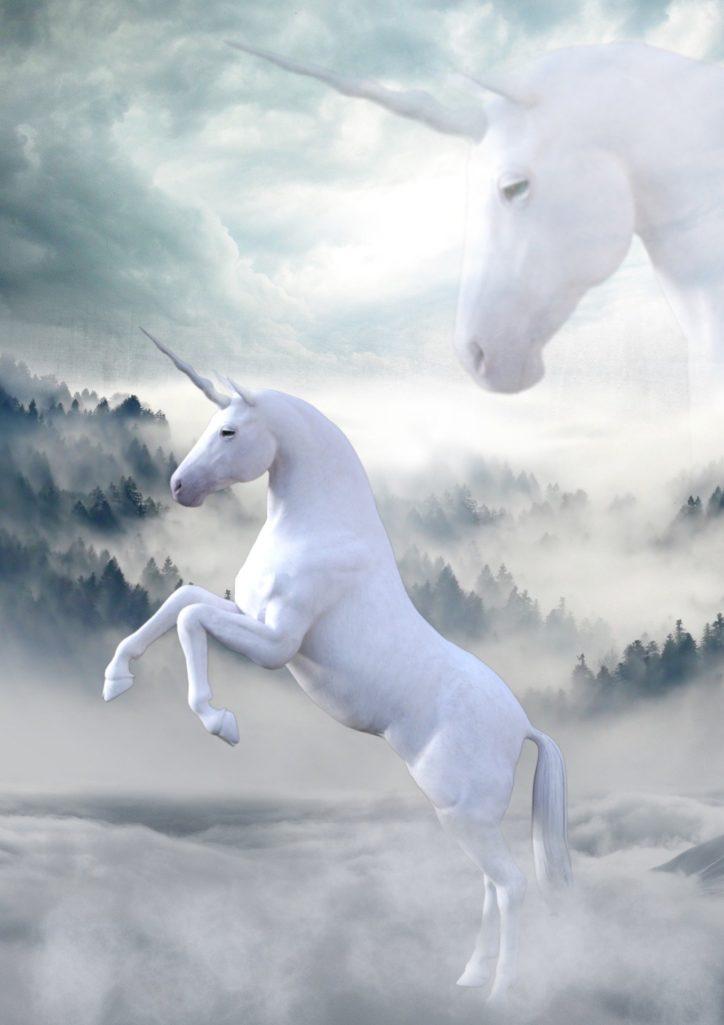 2 Licornes