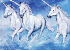 3 Licornes chevauchant dans l'eau