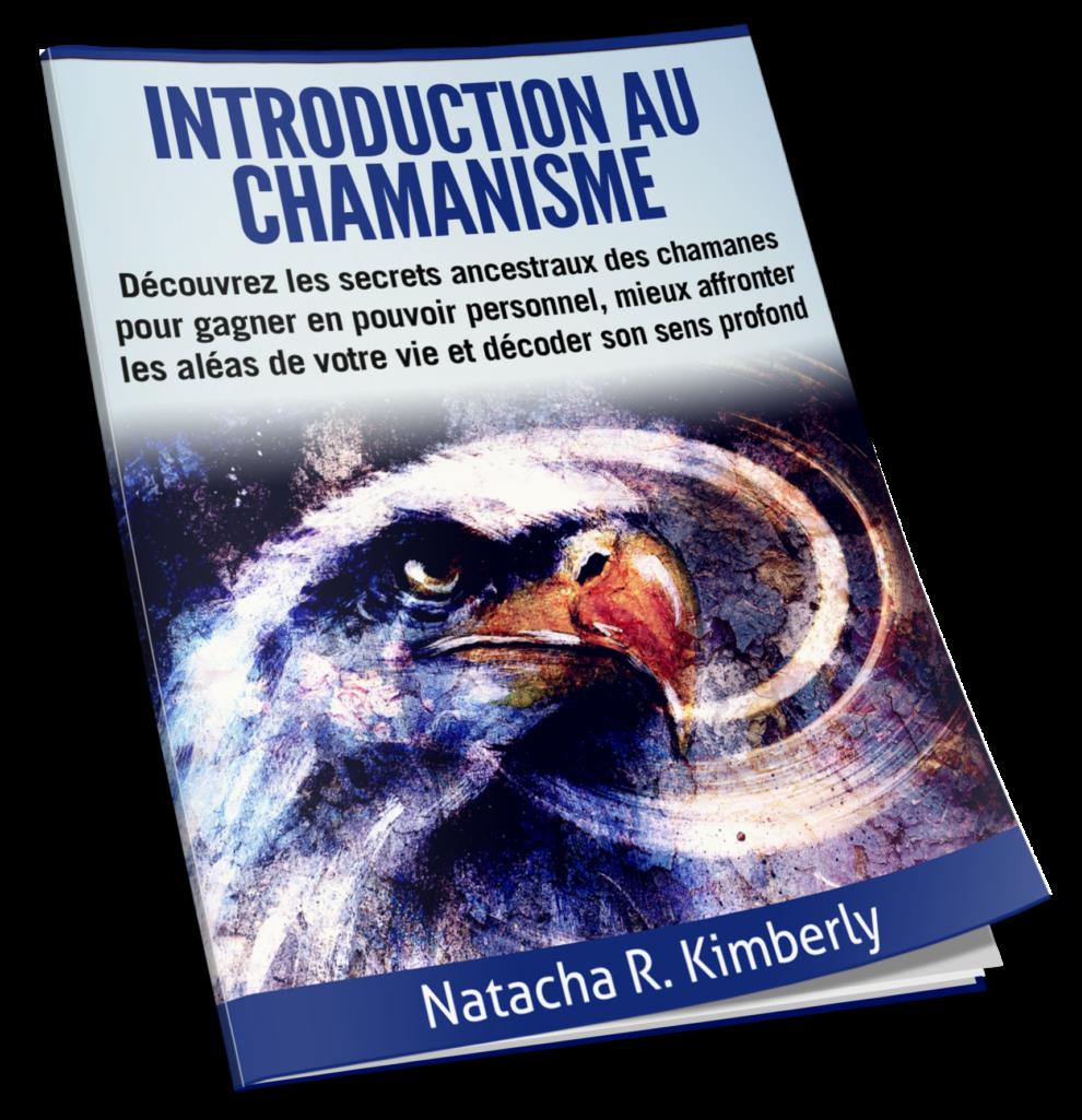 Introduction au chamanisme et aux 6 piliers de la pratique chamanisme