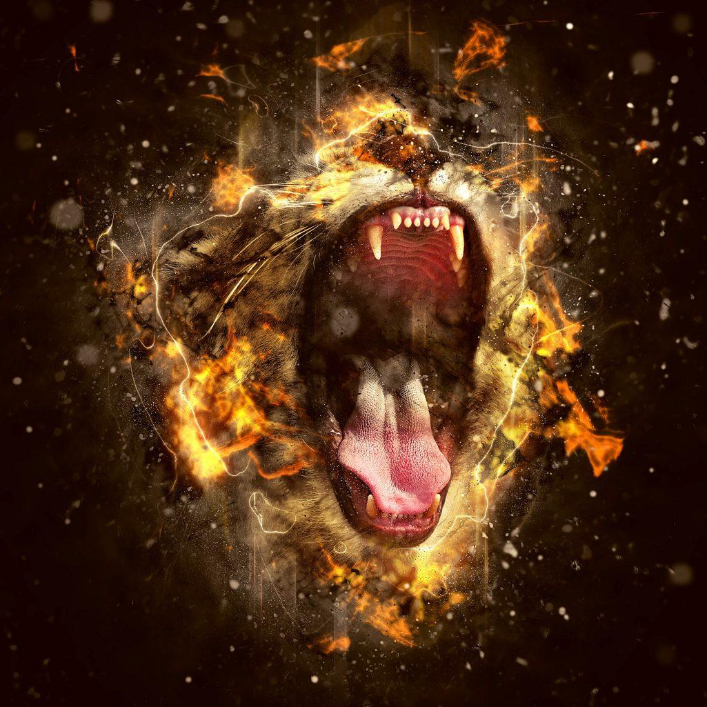 Lion Animal Totem