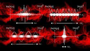 Les ondes cérébrales pendant le rêve