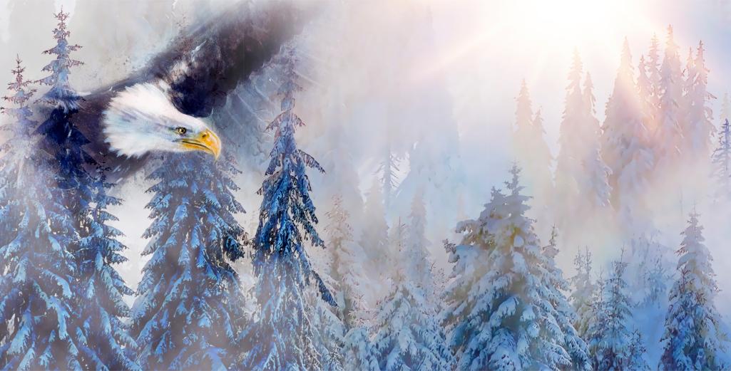 Aigle, animal de pouvoir