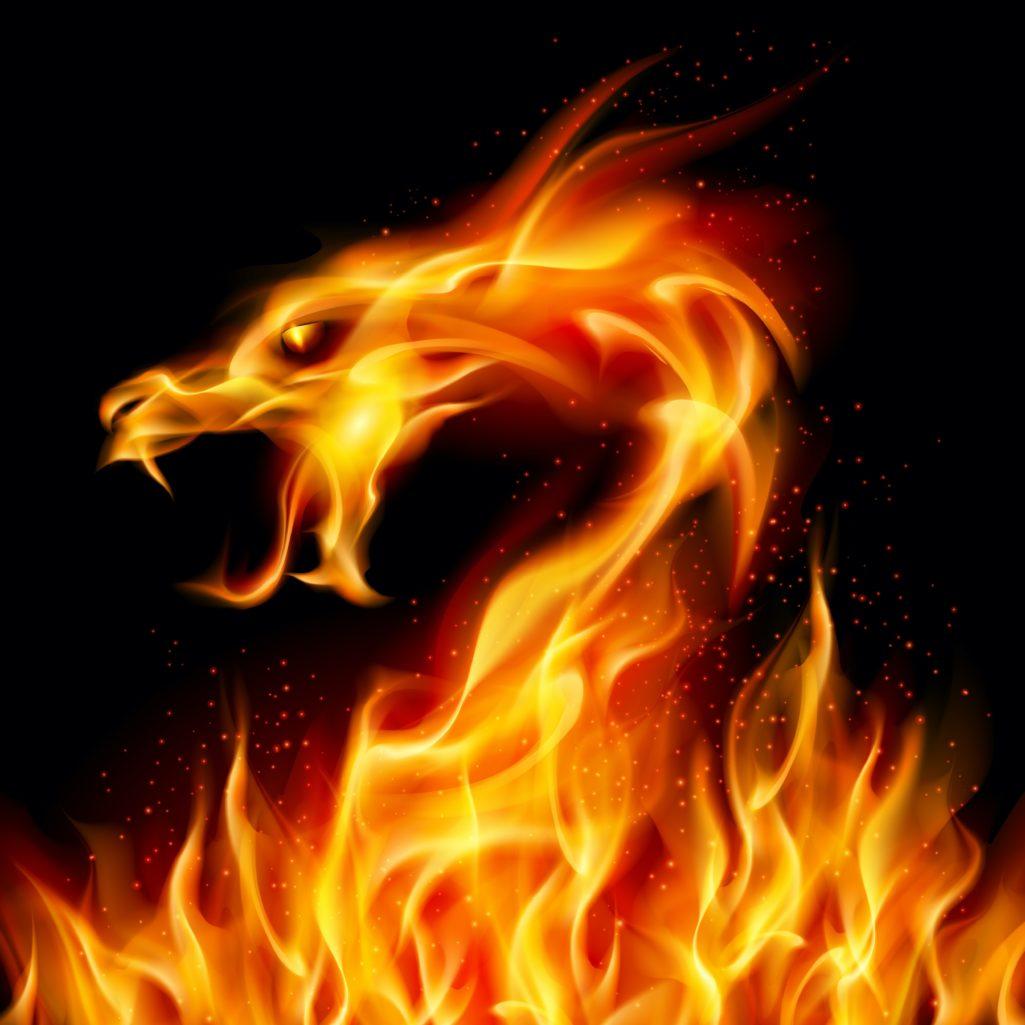 Dragon de Feu