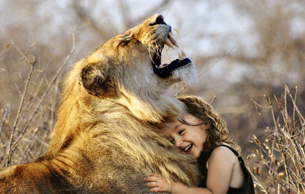 Lion et petite fille