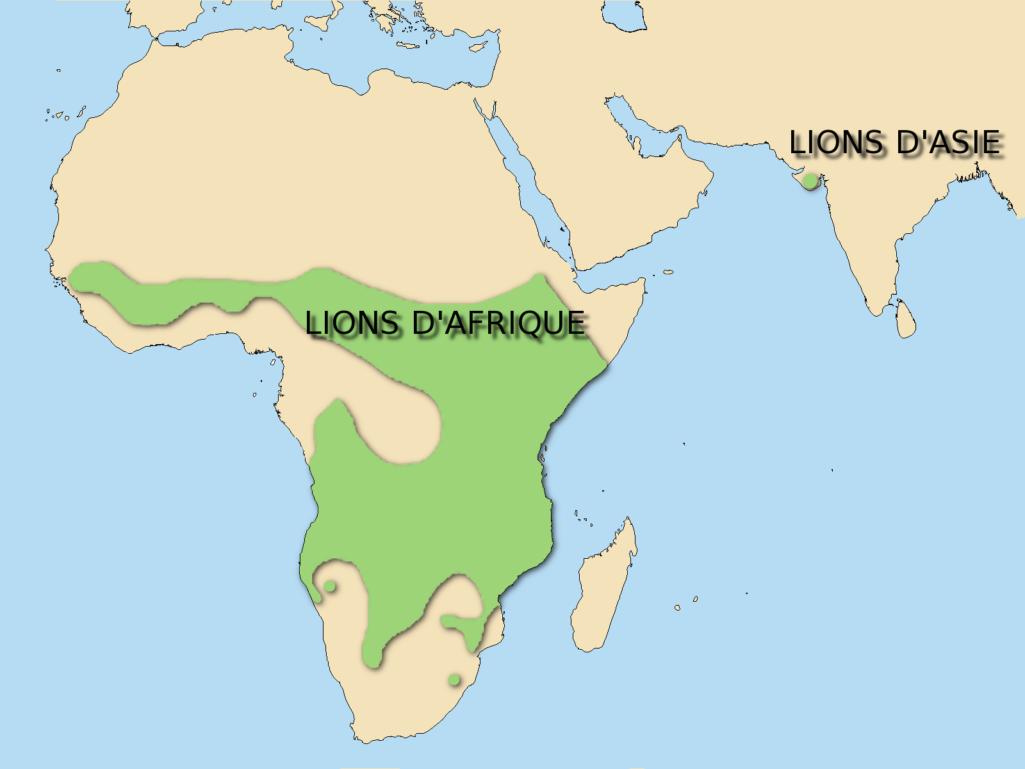 Répartition des lions dans le monde